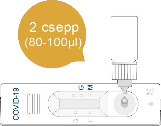 IgM/IgG koronavírus teszt használata 2